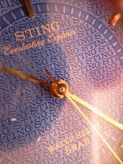 Наручные часы «STING Everlasting Explorer»